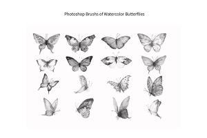 photoshop-brush-watercolor-butterflies-abr-3