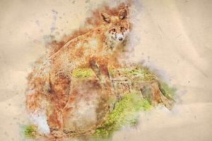 watercolor-photoshop-action-64