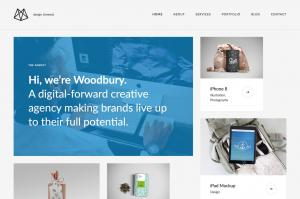 woodbury-agency